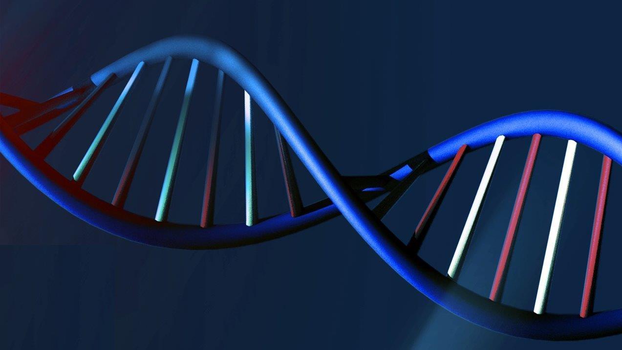 Scientists debate risks, ethics of editing human DNA