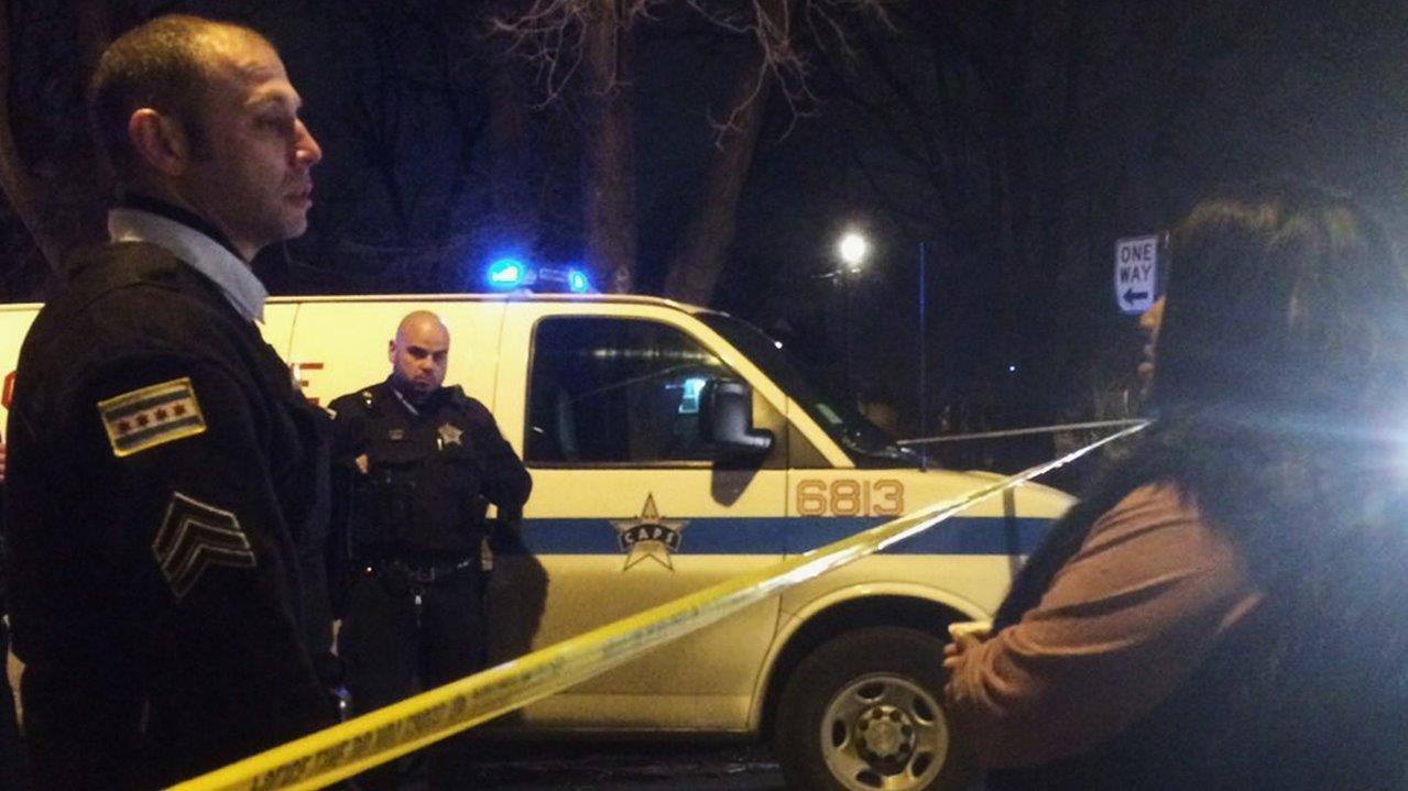Chicago homicides soared in 2015, but crime fell overall