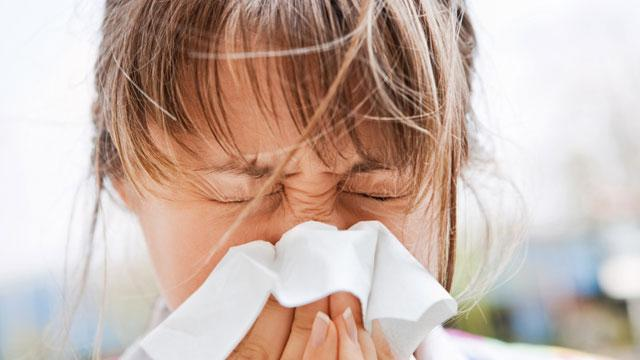 Non-traditional forms of treatment may offer relief for allergy sufferers