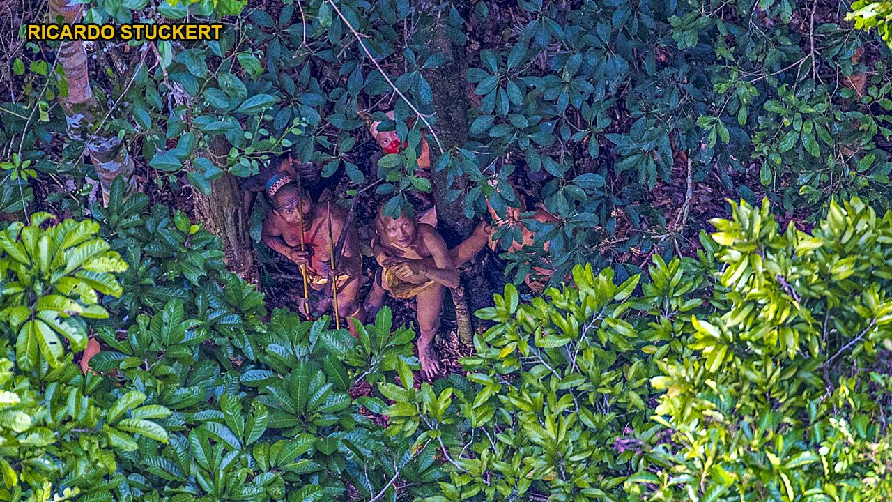 Amazon massacre? Members of uncontacted tribe killed by miners, reports say