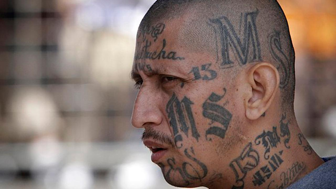 President Trump makes MS-13 face of immigration reform