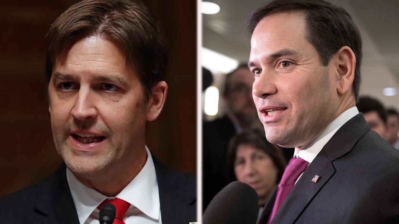 GOP senators push back against Trump's gun comments