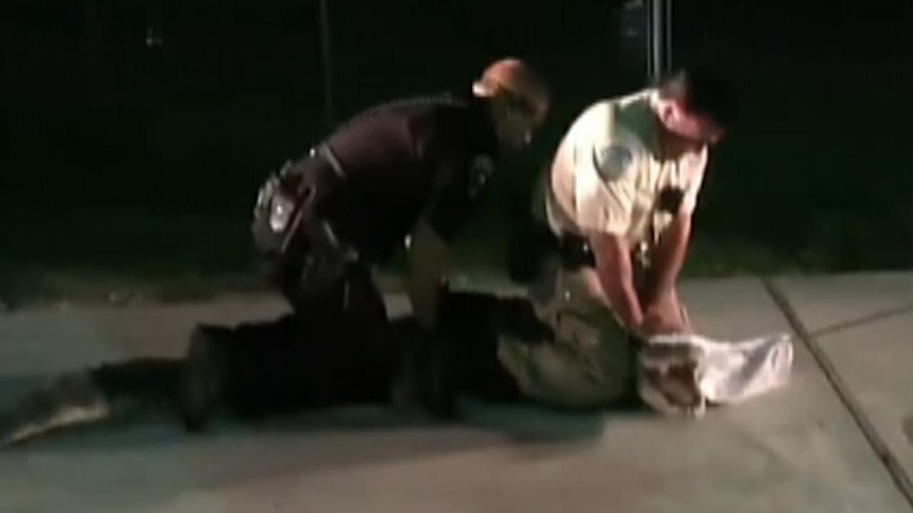 Texas cops wrangle alligator in Walmart parking lot