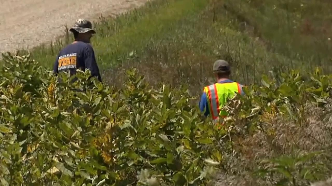 Search team scours land near Iowa farm for Mollie Tibbetts