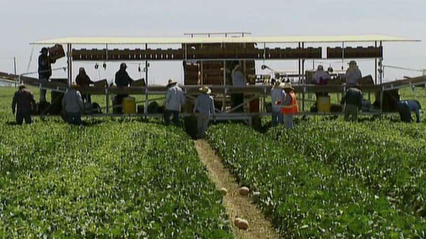 China targets California crops in escalating trade standoff
