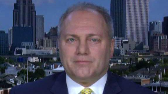 Louisiana Republican Rep. Steve Scalise says he is hopeful that a new border security deal will include funding for the wall.