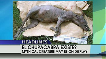 El Chupacabra Existe? | On Air Videos | Fox News