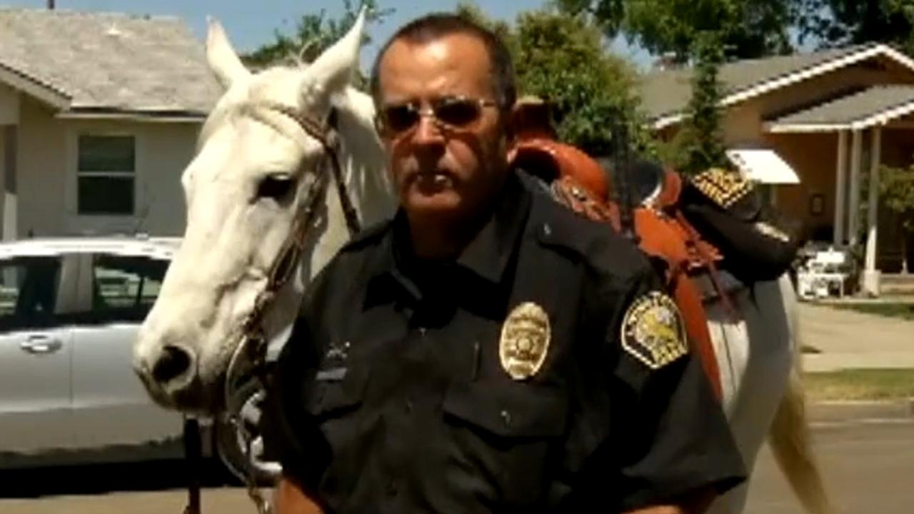 Officer on horseback makes DUI arrest in California