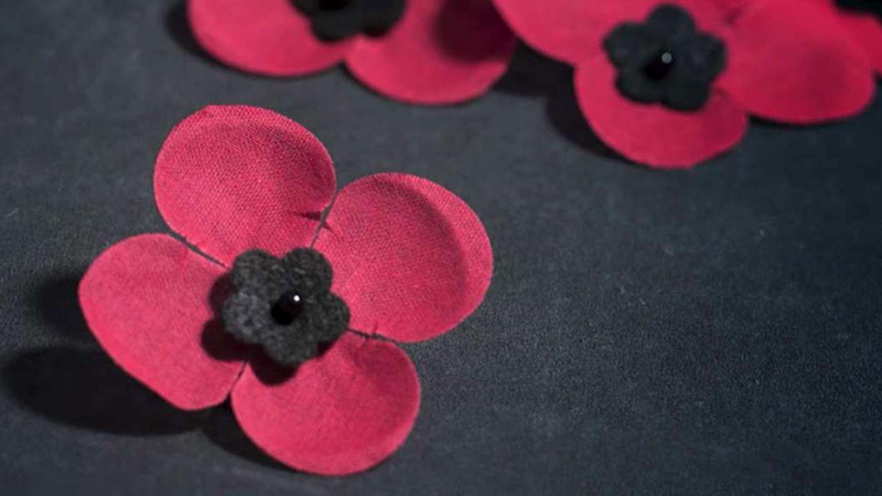 National Poppy Day Honors Veterans Servicemembers Fox News Video