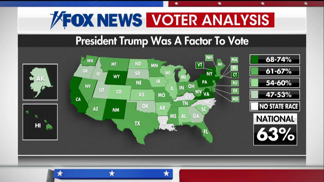 Live voter analysis