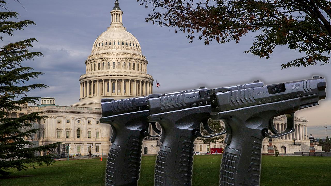 House Democrats plan major gun control push