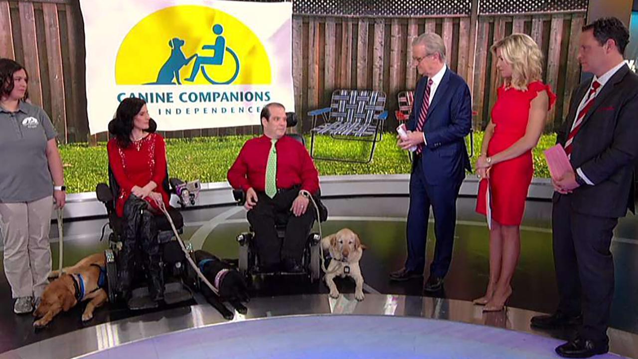 Service dogs stop by 'Fox & Friends'