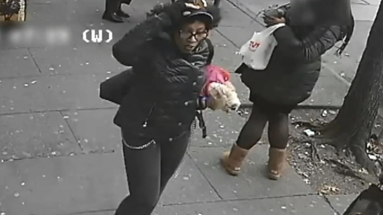 Woman, friend slashed on bus in New York City after trying to pet another woman's dog
