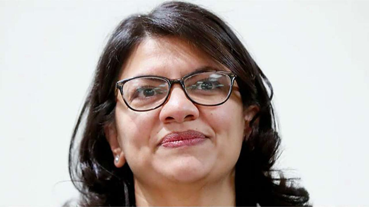 Could Michigan Congresswoman Rasheda Tlaib's profane call for the president's impeachment hurt the Democrat Party?