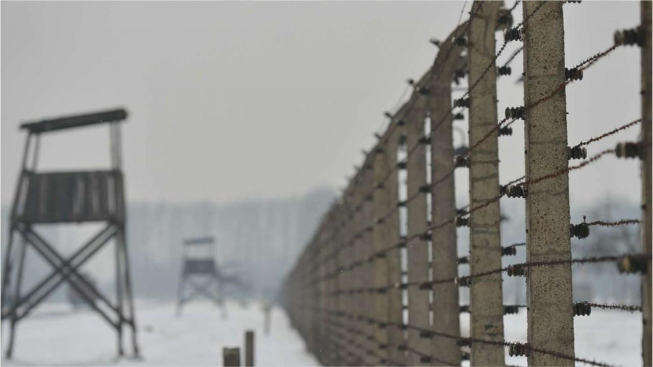 Enormous pulse of death' in Holocaust was worse than feared, researchers find