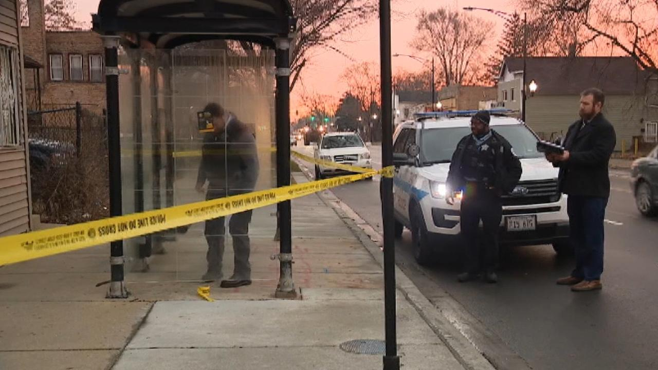 Woman with concealed carry license shoots and kills attempted robber at bus stop in Chicago, say police