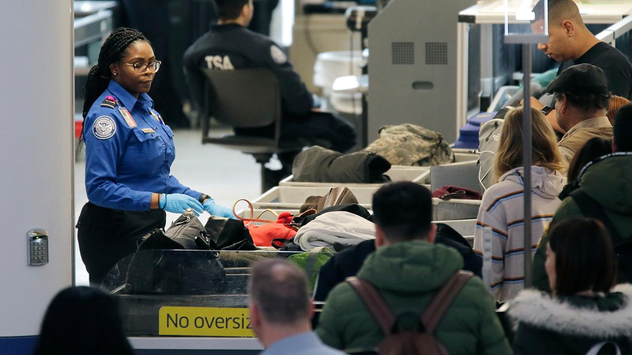 Some airports report longer security lines as unpaid TSA agents call in sick over partial government shutdown