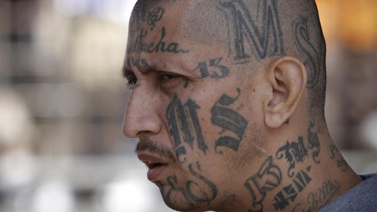 Is an immigration loophole allowing MS-13 gang members to go free?