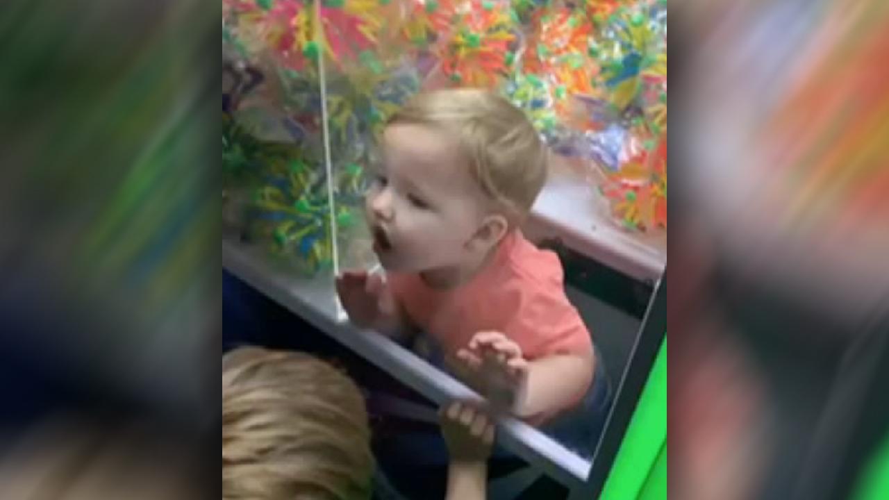 FOX NEWS: Alabama toddler gets stuck inside arcade claw