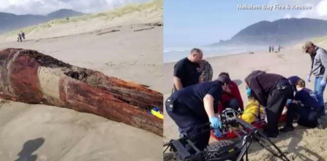 Officials say an Oregon woman was 'crushed' due to a sneaker wave