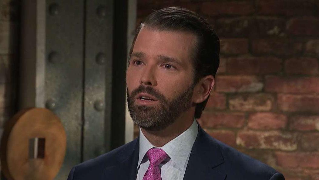 Donald Trump Jr. calls Russia probe 'disgusting'