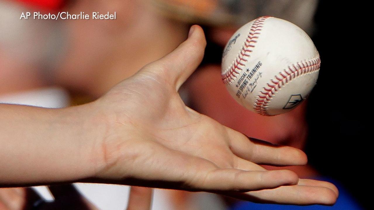 The 9 wackiest minor league baseball team names | Fox News