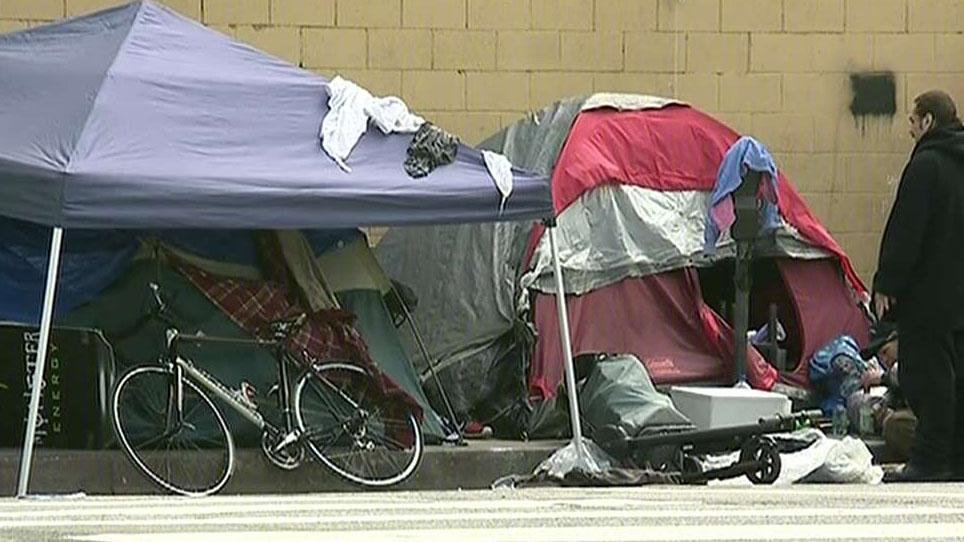 Los Angeles sees surge in homeless population