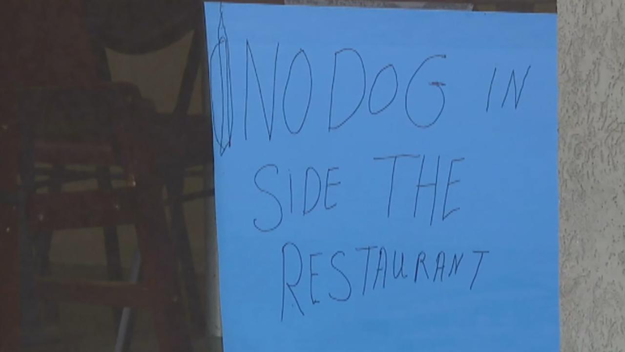 Veteran, service dog denied service at Utah restaurant