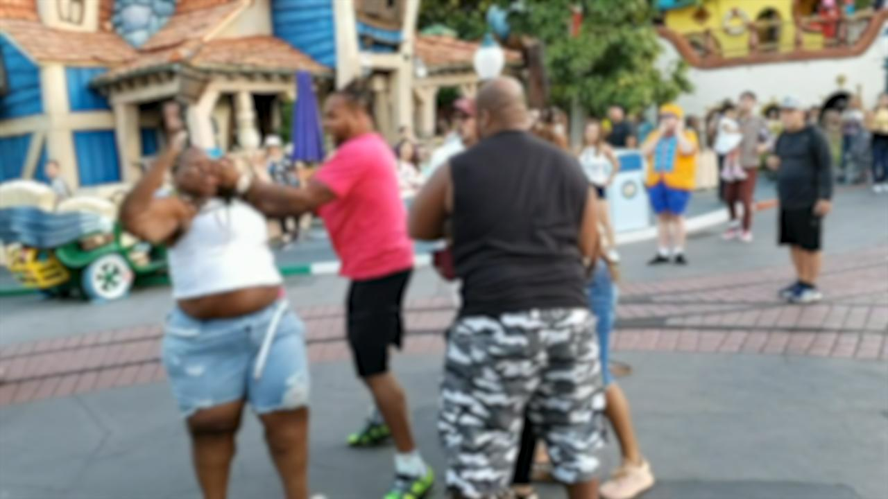 Brutal fight breaks out in Disneyland