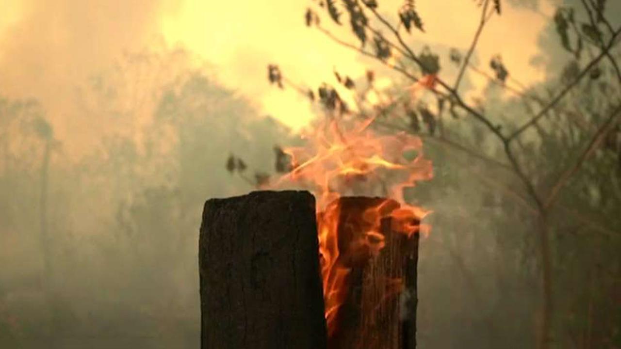 """ترامپ: آمریكا """"آماده یاری رساندن"""" به برزیل در آتش سوزی جنگلهای بارانی آمازون است"""