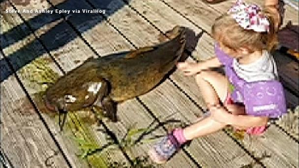 Girl, 4, reels in 'monster' 33-pound fish with mini 'Frozen' fishing pole