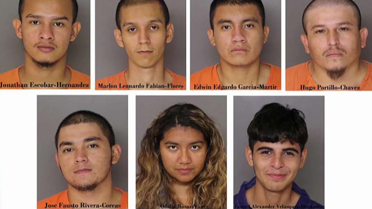 Six MS-13 gang members suspected in brutal murder case in US illegally