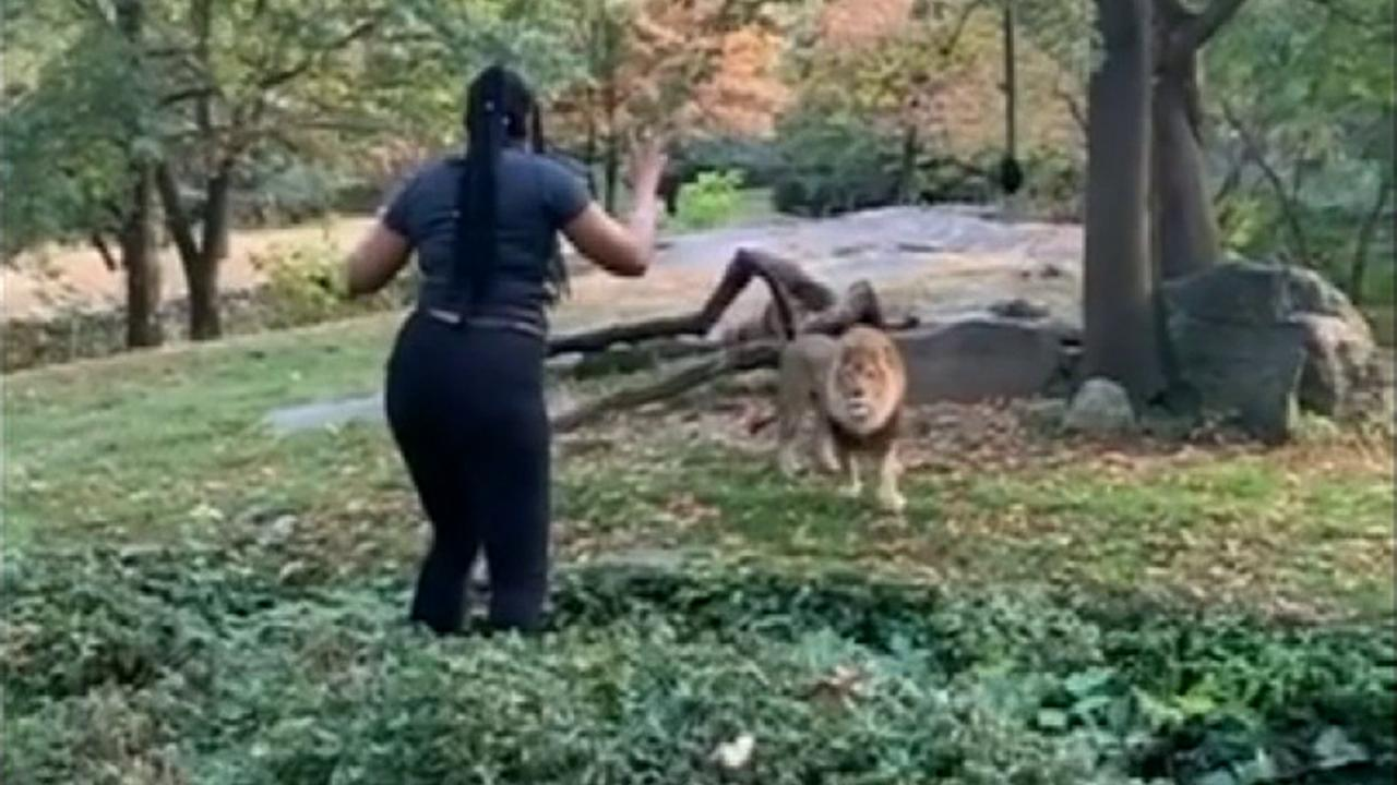 Bronx Zoo 'Lion Queen' says she's a 'Black Israelite' in wild arraignment hearing