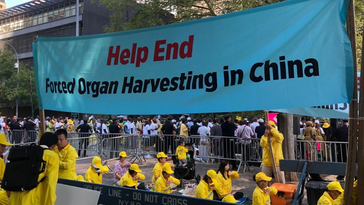 Επιζώντες και θύματα συγκλονιστική κατάσταση-κυρώσεις συγκομιδή οργάνων στην Κίνα