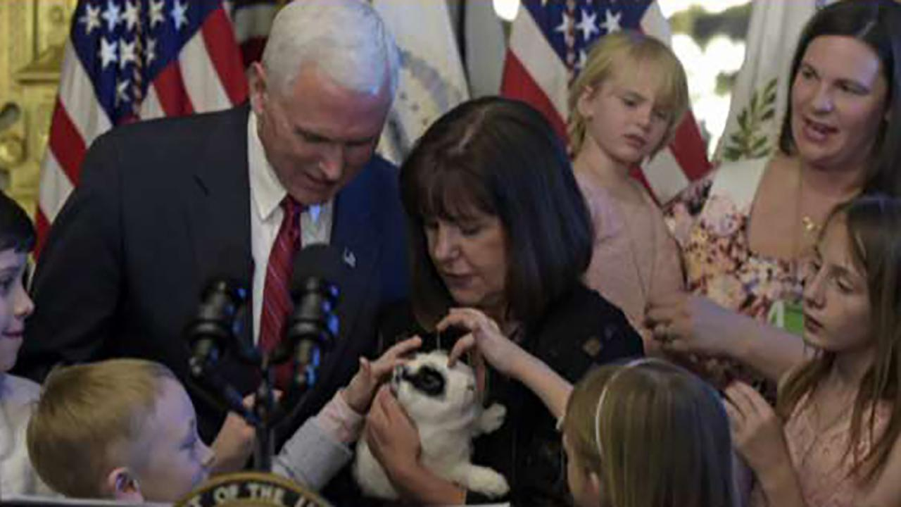 Pence family bunny is back in 'Marlon Bundo's Best Christmas Ever'