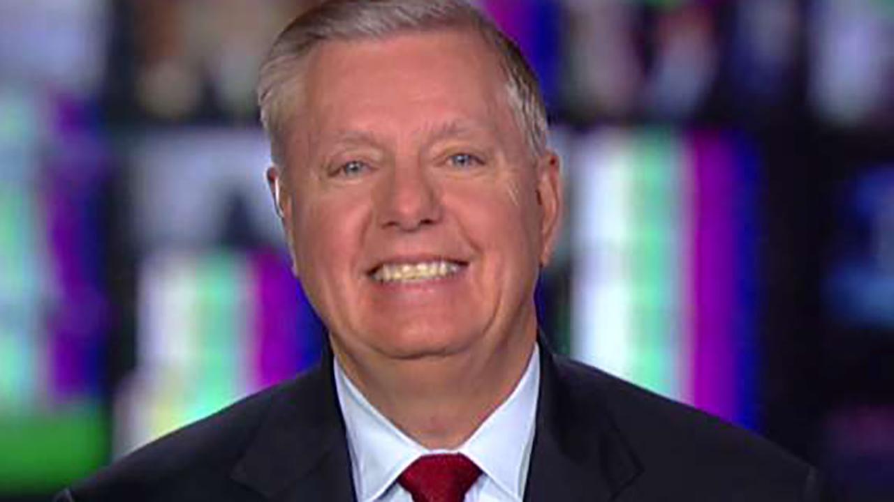 Sen. Lindsey Graham on Democrats' partisan impeachment push