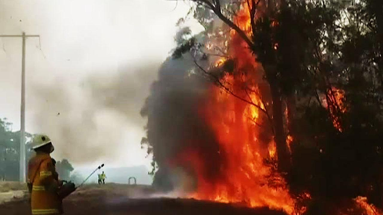 Climate change or poor policy? As Australia's wildfires see some relief, blame game ascends