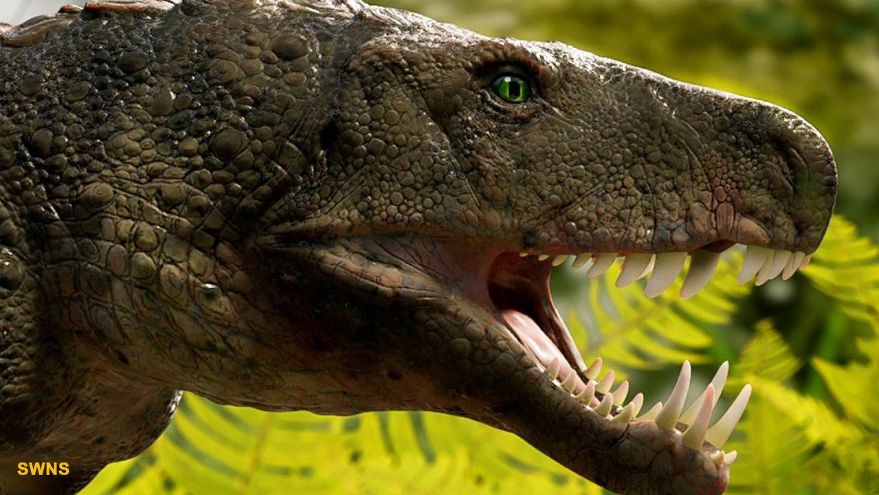 'Bonecrushing' crocodile that hunted dinosaurs 230M years ago discovered in Brazil