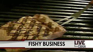 Fishy Food