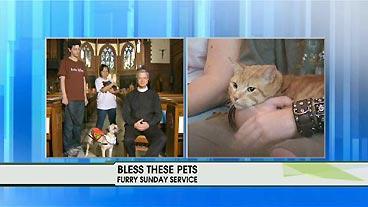 Pet Prayers