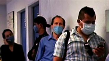 Swine Flu: Deadly By Fall?