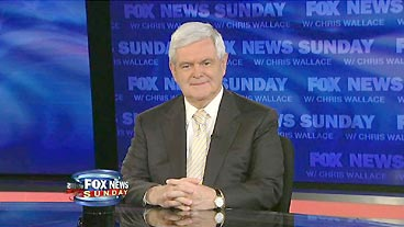 Newt Gingrich on 'FNS'