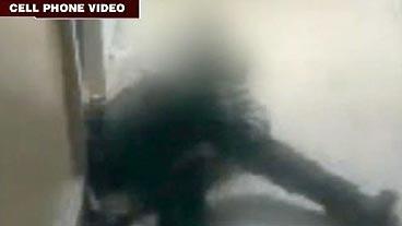 Human 'Dog Fighting'