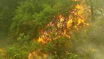 Fleeing Fires Again