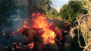 Firefighting Prisoners