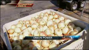 Turning Onions Into Power