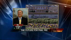 The Future of Fannie Mae and Freddie Mac