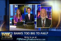 Banks too Big to Fail?