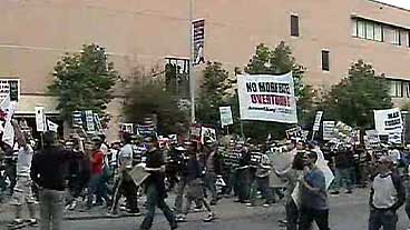 Prop 8 Protests